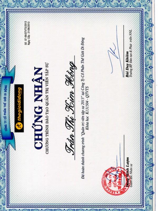 Mobile World Management Trainee Program 2013